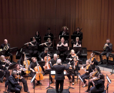 Side by Side Chamber Orchestra