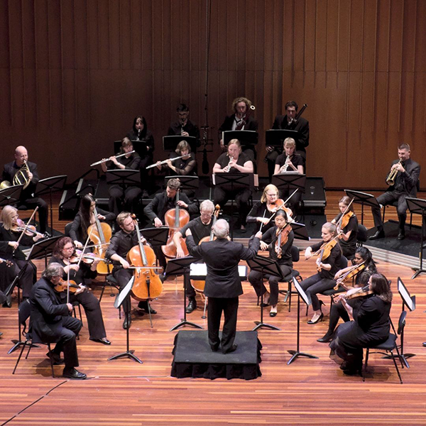 ANU CSO Side by Side Chamber Orchestra